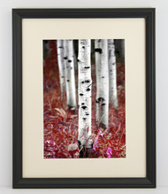 16x16 Thin Black Bevel Frame