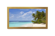 12x36 Panoramic Frame - Gold