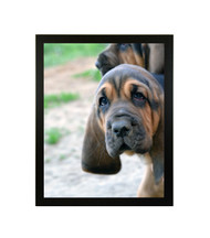 """Thin Flat Black Picture Frame - wood - 3/4"""" wide - 16x20 artist frame - standard picture frame - empty"""