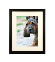 """Thin Flat Black Picture Frame - wood - 3/4"""" wide - 16x20 artist frame - standard picture frame - with matting"""