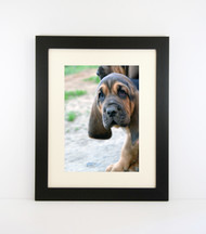 """Medium Flat Black Picture Frame - wood 1  1/2"""" wide - 16x20 artist frame - standard picture frame - with matting"""