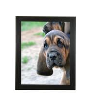 "Medium Flat Black Picture Frame - wood - 1 1/2"" wide - 16x20 artist frame - standard picture frame - empty"