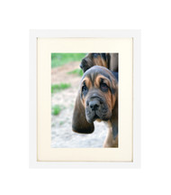"""Thin Flat White Picture Frame - wood - 3/4"""" wide - 16x20 artist frame - standard picture frame - with matting"""