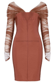 Long Sleeve Ruched Mesh Dress Brown