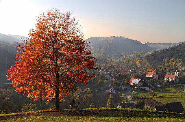 The Black Forest Germany >> Top Things To Do And See In Black Forest Germany Bavarian