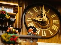 clock animation - authentic german coo coo clocks