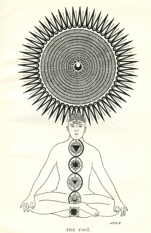 The yogi.