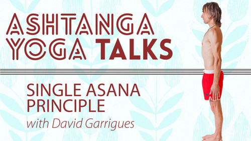 A talk on the Single Asana principle plus tools that will help the practitioner access the central axis in their practice.