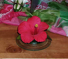 Porcelain Flower -RED HIBISCUS