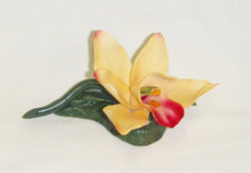 Porcelain Flower- Yellow Orchid