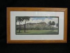 "Hawaiin Koa  Veneer Framed ART 14.5"" X 25"" - Diamond Head"