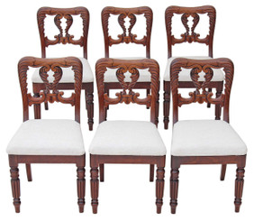 Antique rare set of 6 William IV Victorian dining chairs carved mahogany