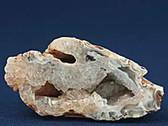 White Tan Quartz Agate Geode