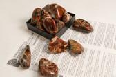 "Brecciated Jasper Tumbled Stones 1/4 Lb Extra Large Stones 2-2.25"""