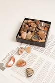 """Jasper Vogesite Tumbled Stones 1/4 Lb Small Stones .75-1.25"""""""