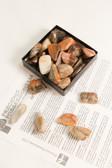 """Jasper Vogesite Tumbled Stones 1/4 Lb Medium Size Stones 1-1.15"""""""