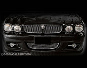 Jaguar XJ & XJR Lower Mesh Grille Assembly 08-2009 models