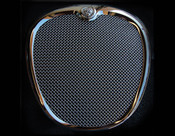Jaguar S-Type Mesh Grille Complete Assembly 05-2008 models