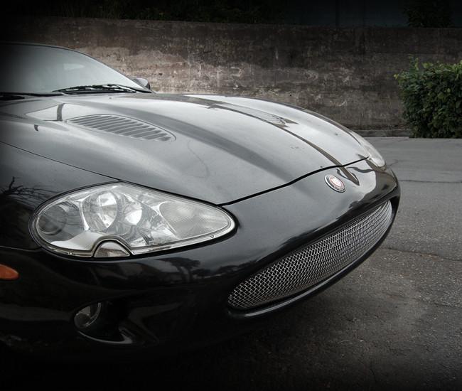 Jaguar XK8 & XKR One Piece Convex Mesh Grille