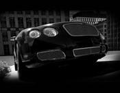Bentley Flying Spur  Main Mesh Grille ; OE Weave 03-2009