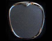 Jaguar S-Type Complete Growler Mesh Grille and Lower Mesh PKG 2000-2004