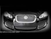 Jaguar XFR Lower Mesh Grille kit (2010-11)