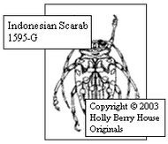 Indonesian Scarab