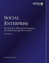 Social Enterprise (David Befus) - Paperback
