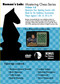 Roman's Lab 13: Maximize Your Opening Success with Black - Chess Opening Video DVD
