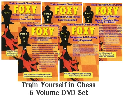 Train Yourself in Chess: IM Andrew Martin 5 DVD Course