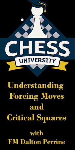 Understanding Forcing Moves and Critical Squares Video Chess Course Download