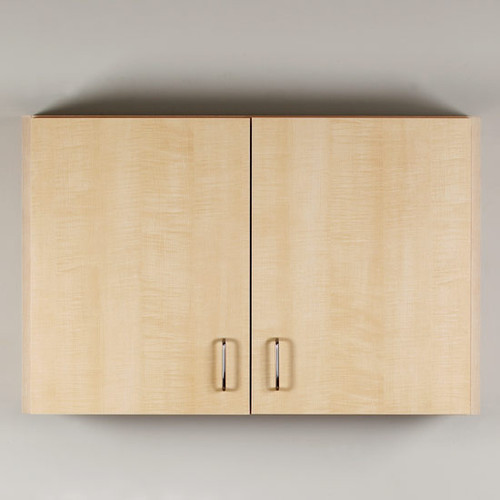 Clinton Wall Cabinet with 2 Doors (8236)