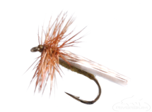 Mottled Caddis, Olive