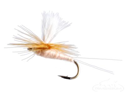 Pink Albert, Parachute