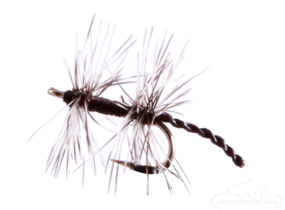 Double Midge, Black
