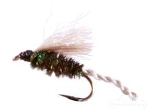 Midge, CDC, Peacock