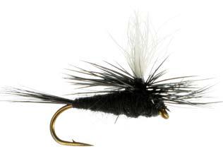 Parachute, Black Gnat