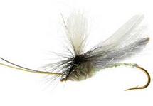 Headlight Caddis, Grey