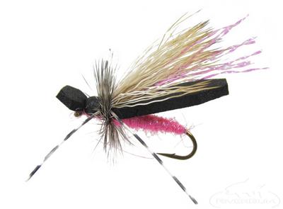 Gypsy King, Variant-Pink