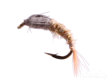 Barr Emerger, Blue Wing Olive