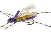 Clodhopper Purple