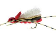 Clodhopper, red