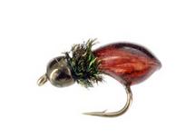 Hot Snail, Bead Head