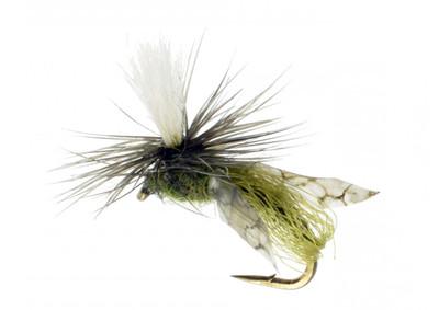 Parachute Caddis, Emerger, Olive