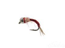 Rainbow Warrior Tungsten BH Red