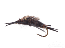 Stonefly Nymph, Rubber Legs, Black