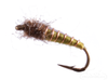 Caddis Pupa, Electric, Olive
