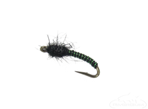 Brassie, Bi-Color, Green-Black