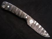 Lacy Smith - 5160 Skinner - SK0137-FLS