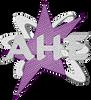 Aim High Elite - 2015 Glitz, Glitter, Glam 5/31/15